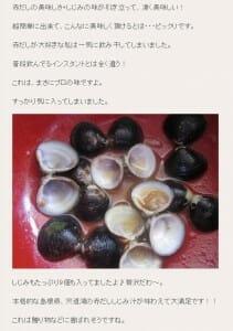 しじみ ブログ  3