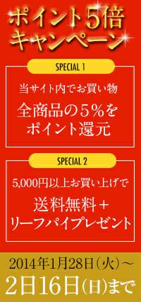 【終了】新春企画/ポイント五倍キャンペーン!!