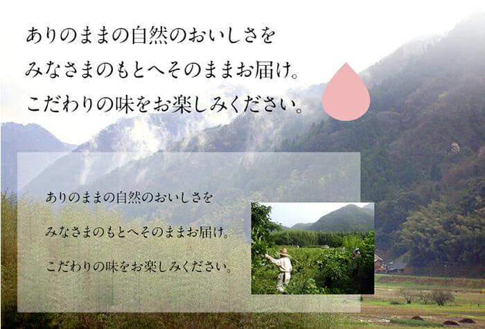shimane_sample