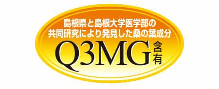 Q3MGを発見!