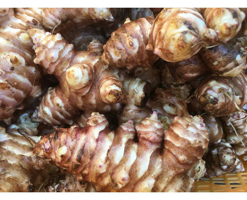 島根の畑でとれたばかりの菊芋を、その場で乾燥、加工します。だから鮮度が高く、香り立ちが良いのです。