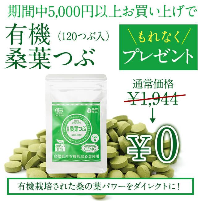 【期間限定】「有機 桑葉つぶ(120粒)」プレゼント