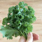 """ケールの栄養価は?効果・効能は?""""野菜の王様""""ケールについて"""