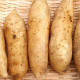 ヤーコンの効果・効能は?どんな野菜?栄養価や特徴について