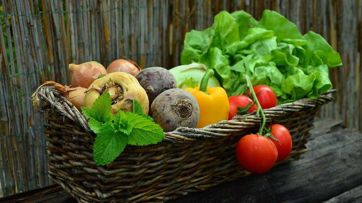 新鮮なたくさんの野菜が入ったバスケット